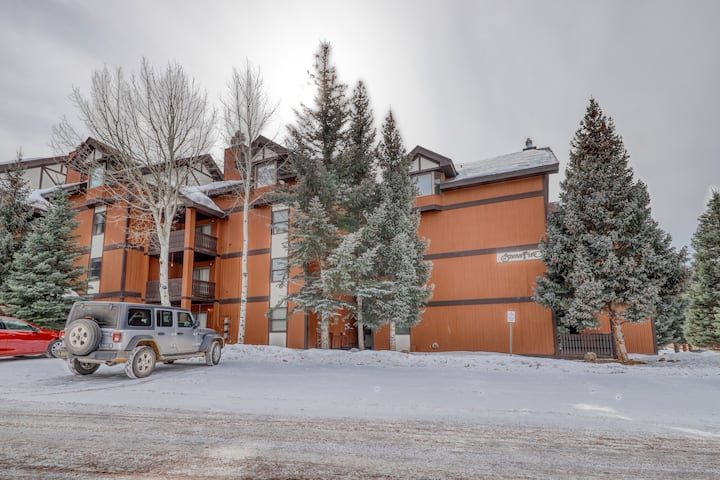 Close to it all! Awesome condo with an elevator, ski lockers and wood fireplace!