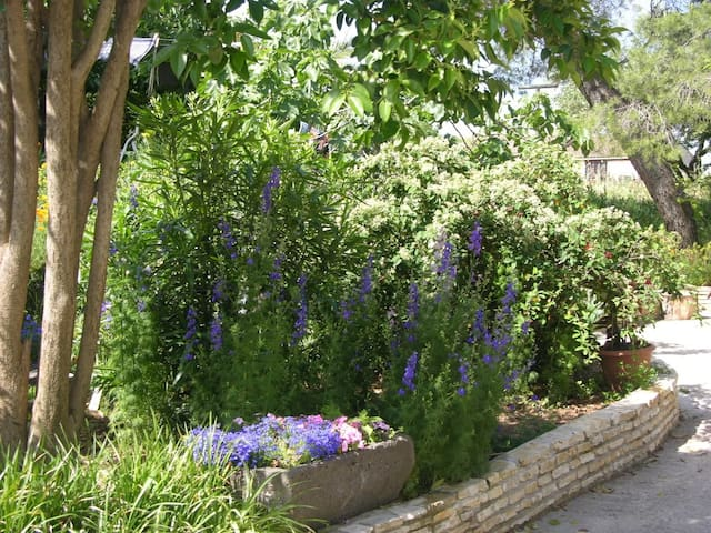"Jardin + B&B ""Les Mimosas"", chambre d'hôtes 2p. - Bessan - Bed & Breakfast"