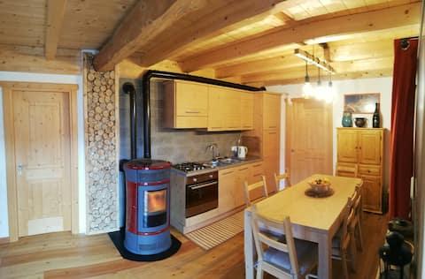traditional alpine house