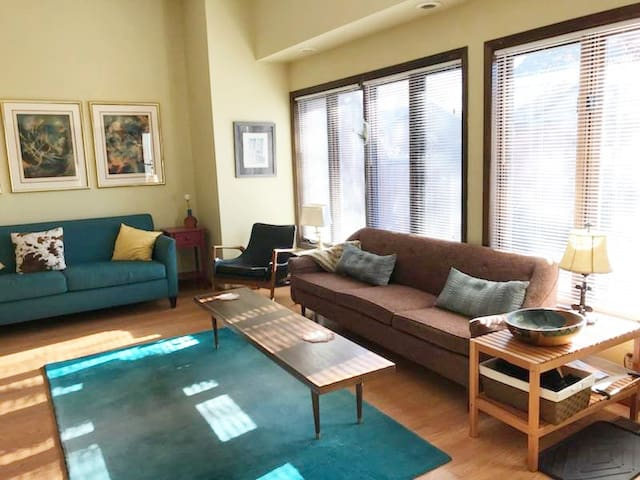 2 br townhome close to U of M and downtown