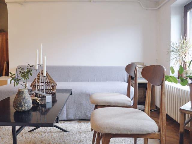 Spacious Minimal Rustic Sava Loft - Belgrade - Apartment