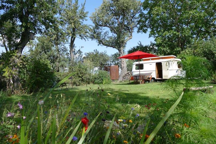 Der Schwalbenhof und unser kleiner Troll am Teich