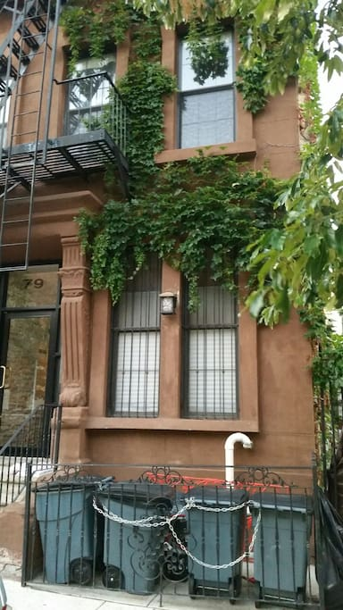 Beautiful Harlem brownstone with ivy exteriors