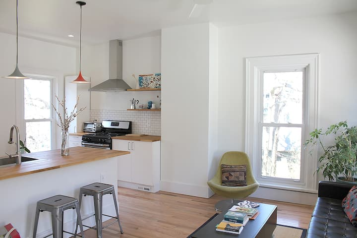 Classic Victorian Meets Modern Close to Downtown