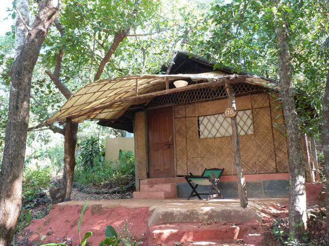 Standard Jungle Cabana