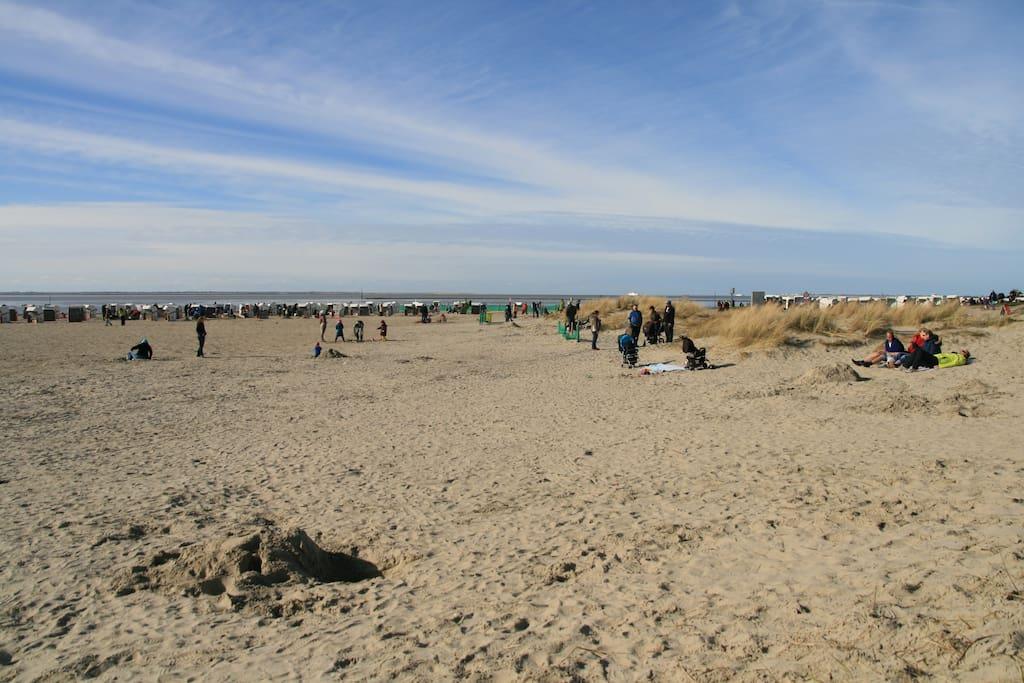 Strand in Norddeich - 300m