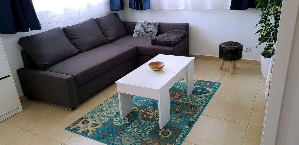 Salon avec canapé lit 160x200 cm