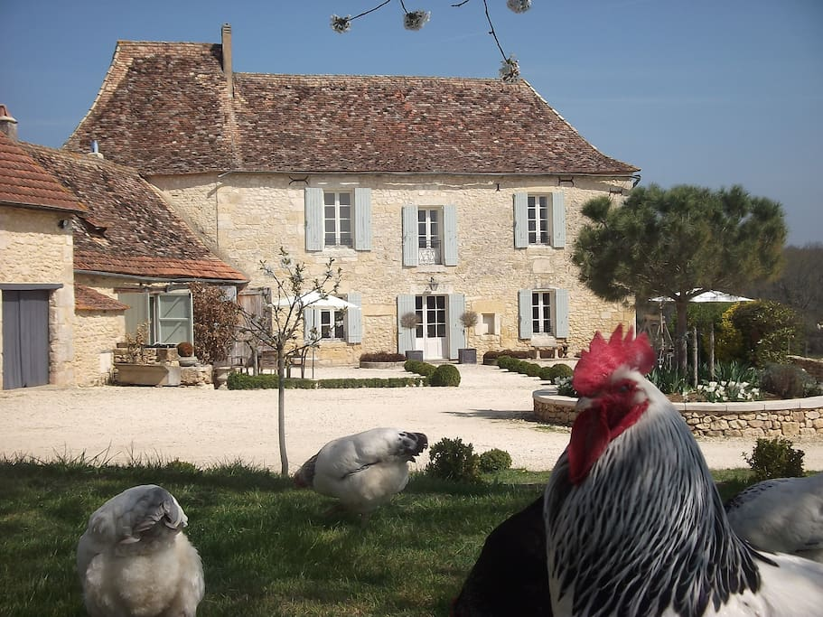 Le Manoir viewed from front courtyard