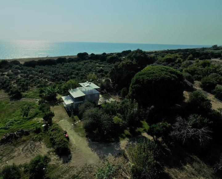 Ktima Bilioni 2 near Olympia