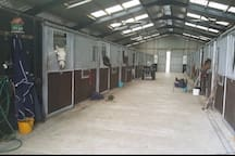 Our stables....have a go!  This would cost a little extra as it takes time to organise a trek, but it'll be reasonable.   If you bring your own equine and tack, you can work away yourself (we can work out the cost depending on your requirements).