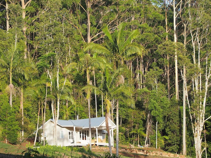 Blue Fig Cottage, Eco-Luxe, Byron Hinterland