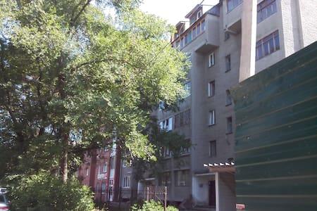 Quiet apartment in a convenient location - Kemerovo - Lejlighed