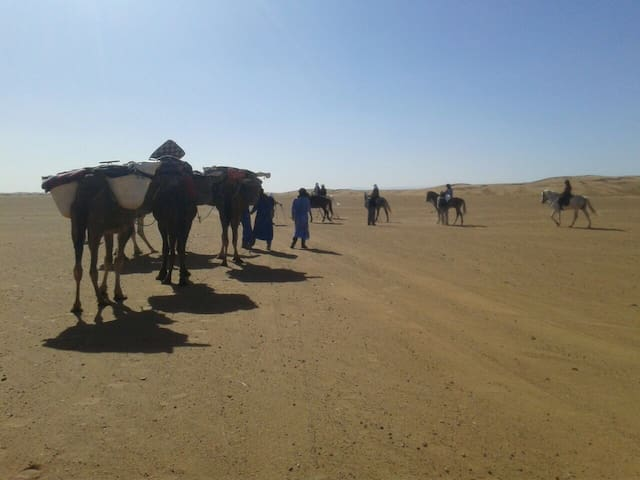 Camel treks 3 nights in Erg Chabbi