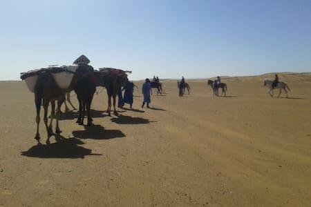 Camel treks 3 nights in Erg Chabbi - Erg Cabbi - Zelt