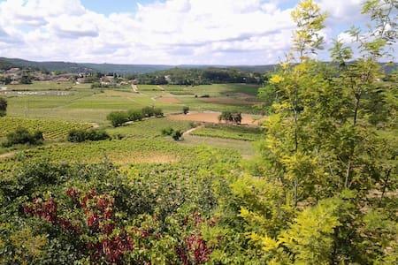 2 pièces,dans villa au calme, vue sur les vignes - Cornillon - Apartment