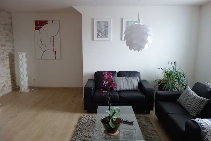 Luxury flat 10 min. from Ostravar arena (AC,wi-fi)