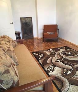 1 комнатная квартира - 아파트