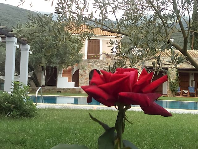 """Luxurious house in Pilion """"POLYXENI"""" with pool"""