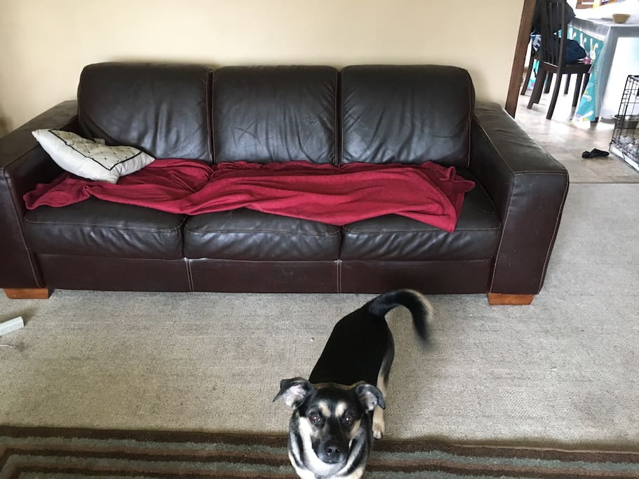 Living room couch, but can also use air mattress