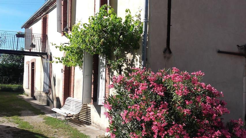 Maison ancienne proche d'Albi - Lamillarié