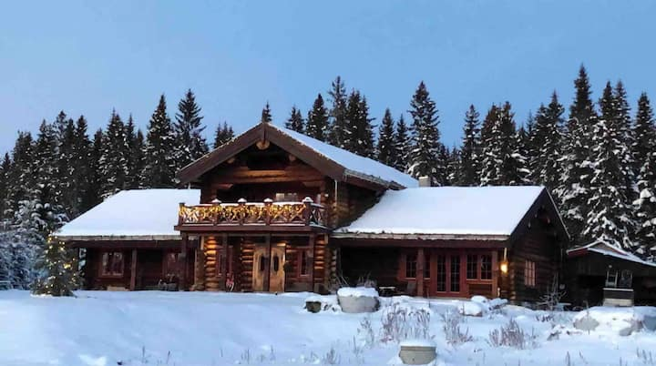 Unique timber log house close to the forest