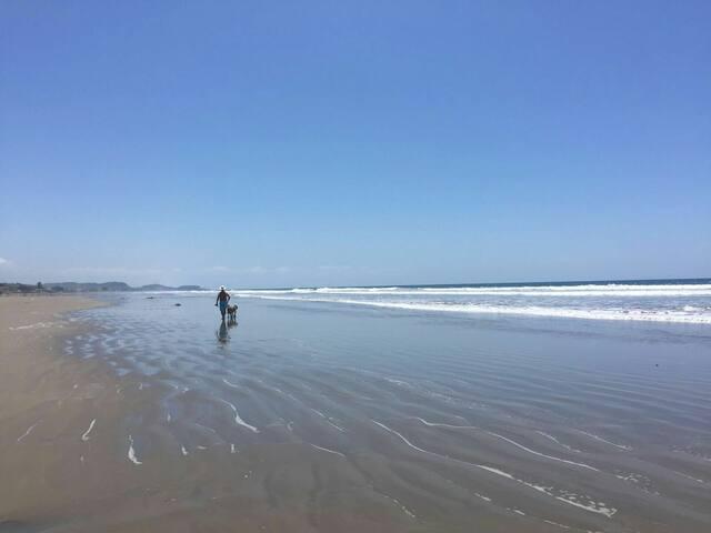 Sun, Sand, Fun and Paradise - Hus