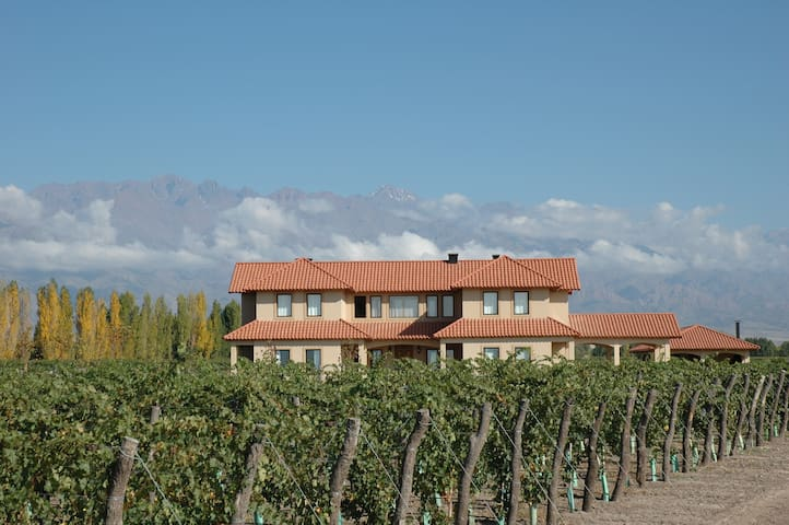 Malbec vineyard with pool, golf course, winery