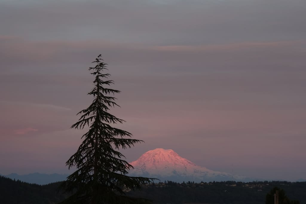 Mt Rainier from the front deck