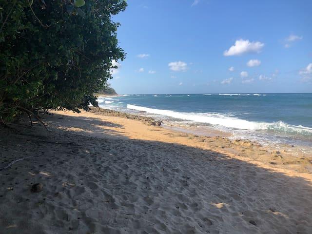 Penthouse Beach Condo-OCEAN VIEWS & OPEN BEACH!!!