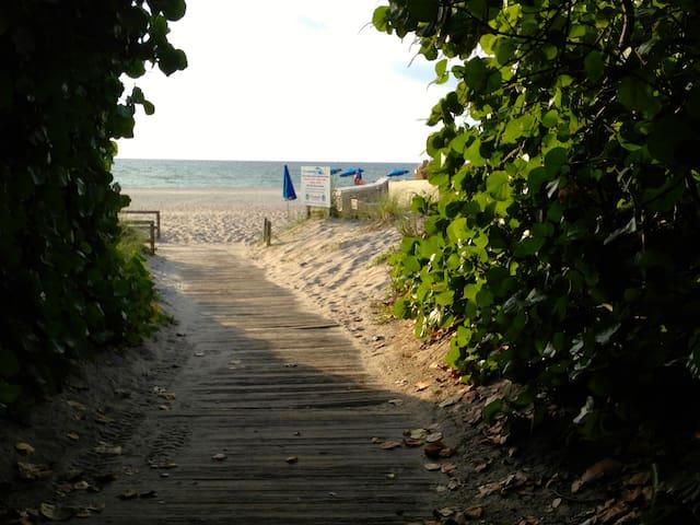 Live on the Beach!