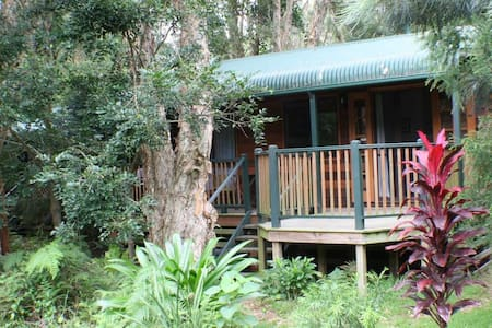 Eco Cottage - Rainforest Getaway by the Beach!