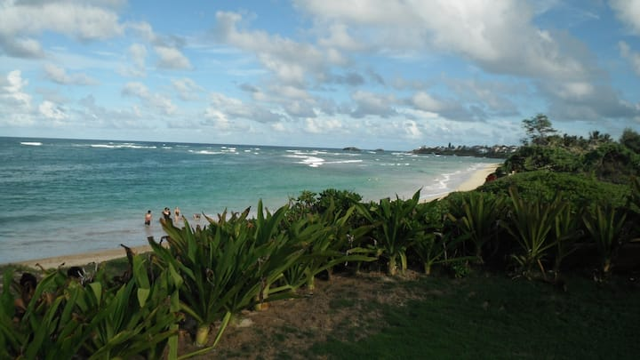 Hukilau Beach Apartment- 30 night minimum