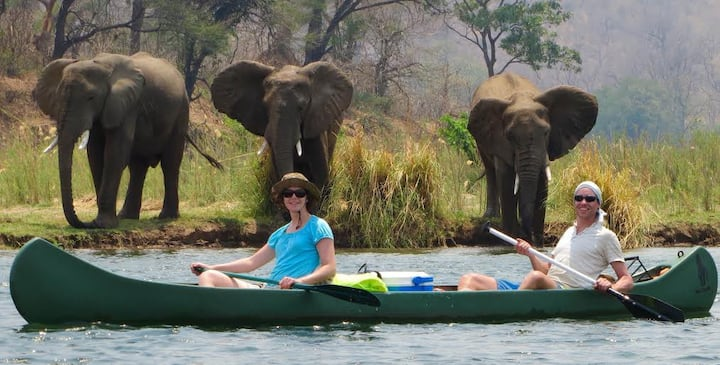 Lower Zambezi Canoe Safari