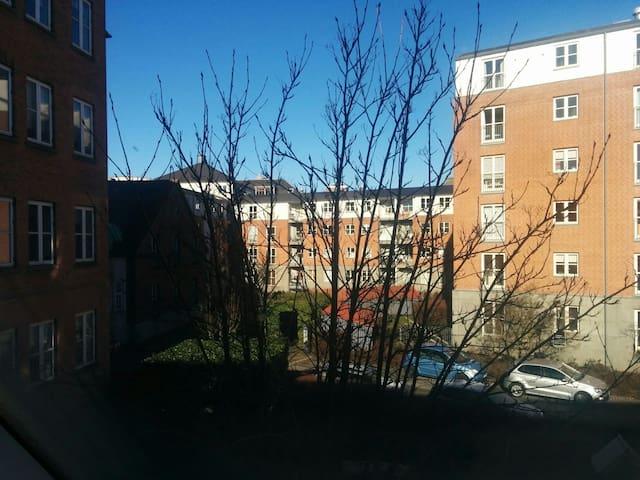 Cosy 2 room apartment in the heart of Odense - Odense - Apartamento