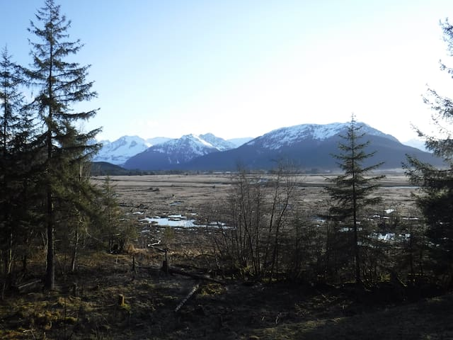 Juneau Mendenhall Wetlands Studio