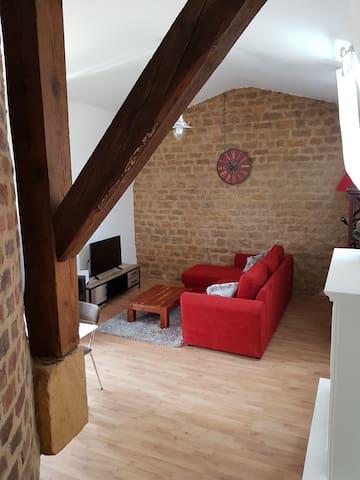 Appartement dans maison Art nouveau