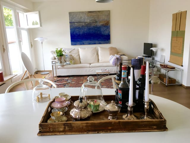 Spacious penthouse, modern, bright, quiet, central - Basilea - Loft