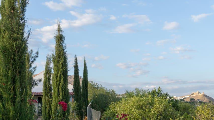 Vistas al castillo árabe de Alora