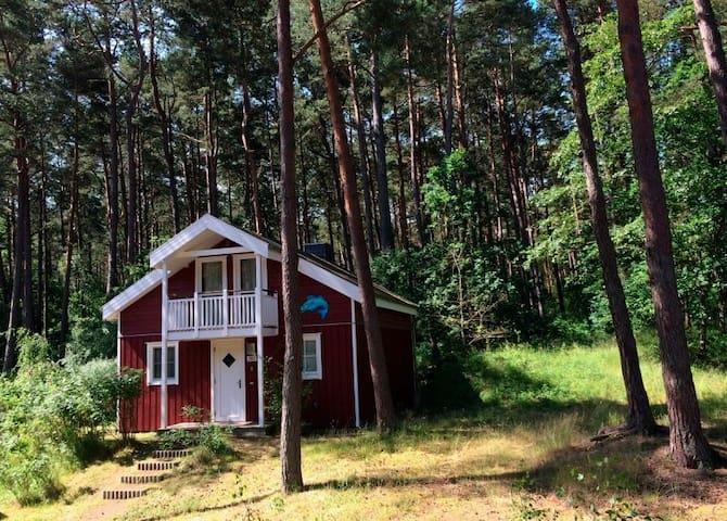 Ferienhaus für 6 Gäste mit 85m² in Baabe (111213)