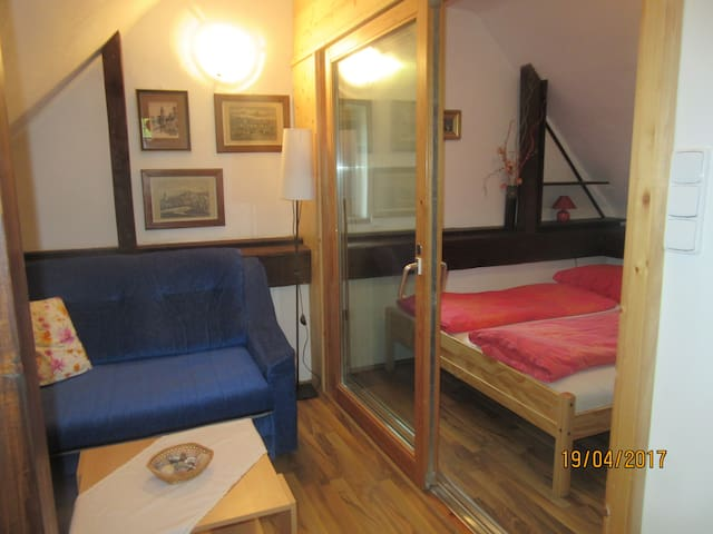 Cheap apartman in the centre of Cesky Krumlov - Cesky Krumlov - Loft