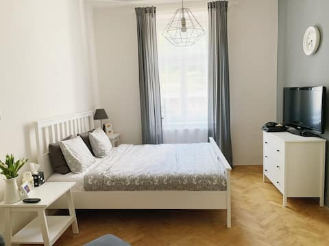 Newly renovated apartment close to the center