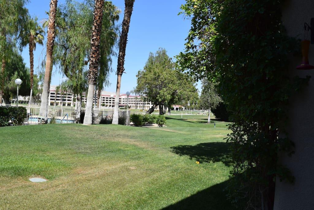 desert princess hotel-walking distance- bars,restaurants, pool