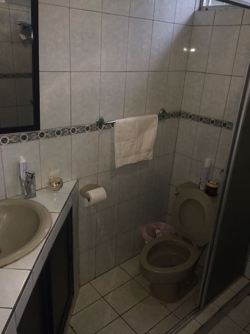 Clean toilet and very fresh water shower (No hot water)