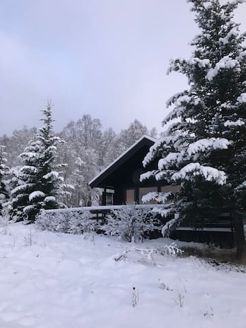 Cozy cabin at Fidjeland (Sirdal)