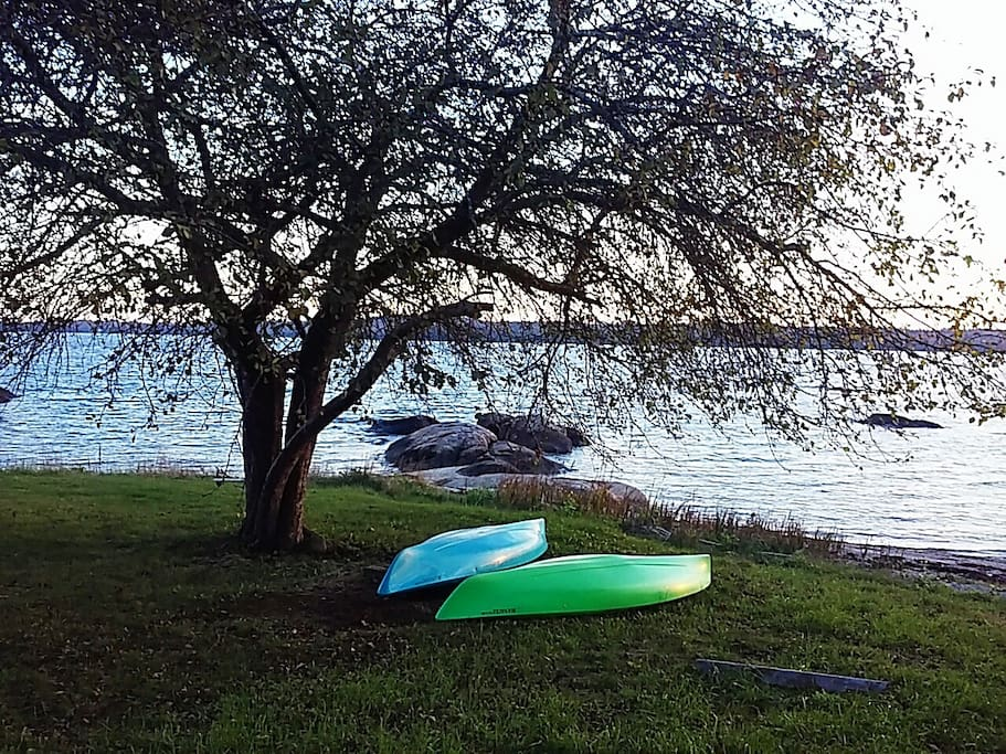 Rent a kayak from the nearby Oakland House and explore the Reach!