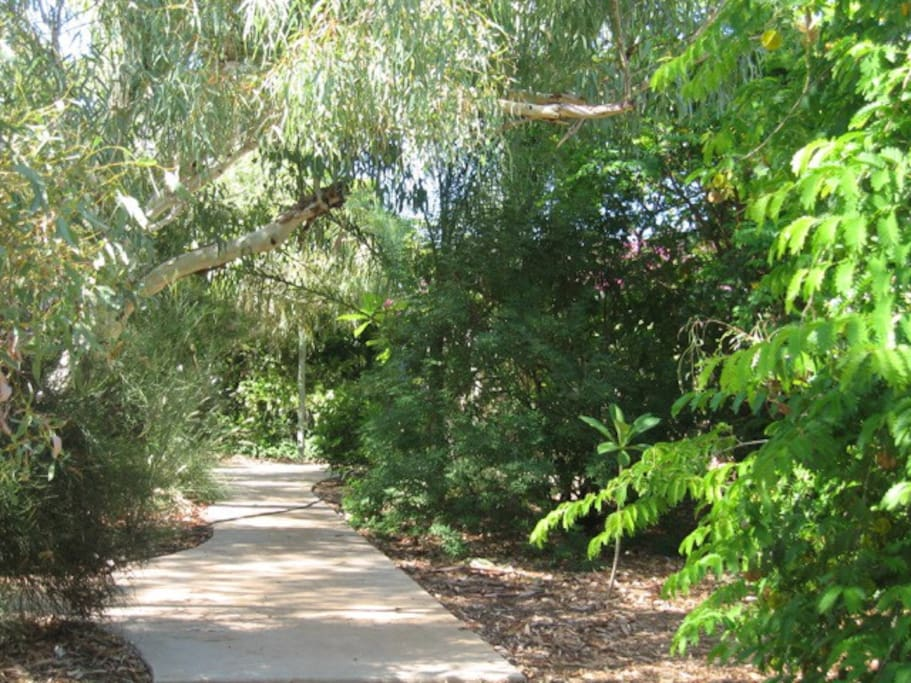 Shady and peaceful, room to wander amid a variety of trees.