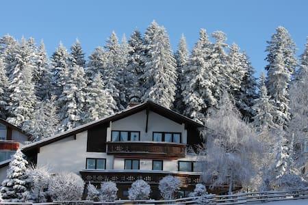 Ferienwohnung - Haus Schwärzler - Sulzberg - Appartement