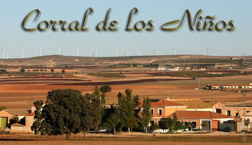 Desconecta el wi-fi y conecta con la naturaleza - Hoya-Gonzalo - Chalet