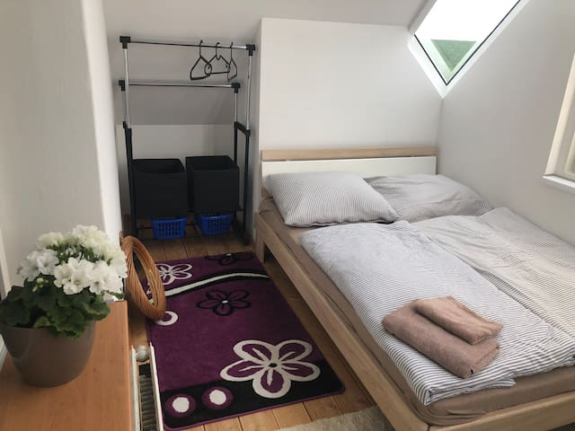 Double room in village Zdiby