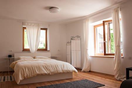 Villa Sage - Apartma Lion - Tolmin